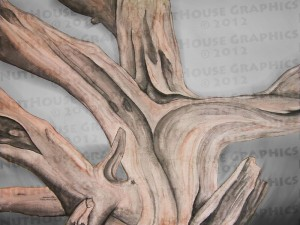 Watercolor Tree at Windy Point, AZ