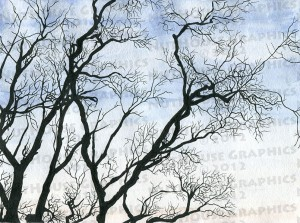 treesWatercolor