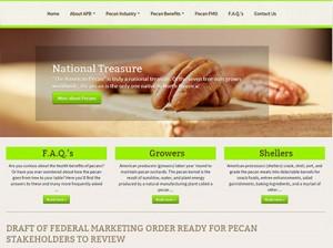 American Pecan Board Website